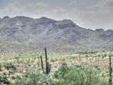 156 Piedra Negra Drive - Photo 8