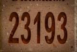 23193 Ashleigh Marie Drive - Photo 3
