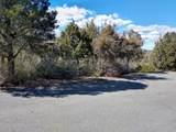 610 Pauley Drive - Photo 3