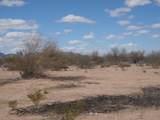 5115 Horseshoe Trail - Photo 8