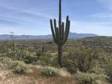 13871 White Face Canyon Canyon - Photo 1