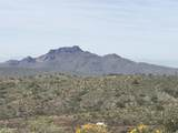 13871 White Face Canyon Canyon - Photo 7
