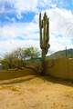 37801 Cave Creek Road - Photo 22