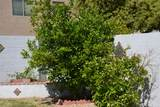 2186 Green Tree Drive - Photo 29