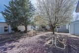 571 Mesquite Tree Drive - Photo 14