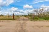 21722 Lone Mountain Road - Photo 41