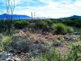 Lot 88 Cochise Lane - Photo 1