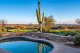 42159 Saguaro Forest Drive - Photo 16