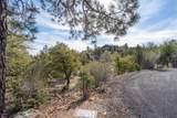 1777 Forest Creek Lane - Photo 5