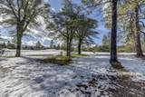1716 Alpine Meadows Lane - Photo 17