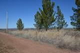 4035 Yucca Lane - Photo 5