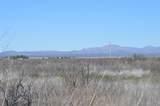 4035 Yucca Lane - Photo 7