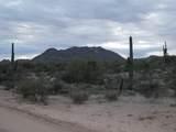 136XX Dove Valley Road - Photo 8
