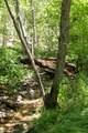 0000 Jack Mountain Loop - Photo 16