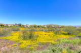 2632 Coyote Creek Drive - Photo 59