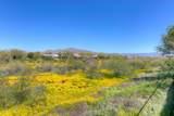 2632 Coyote Creek Drive - Photo 63