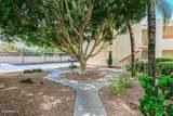 3119 Cochise Drive - Photo 21