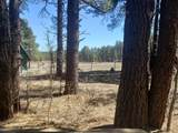 48 Kt Ranch Road - Photo 5