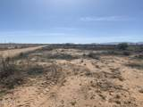 Tbd Willcox Land -019T - Photo 1