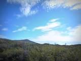 064AB Dewey Overlook Way - Photo 15
