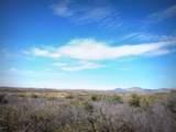064AB Dewey Overlook Way - Photo 28