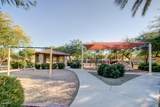 14428 Desert Flower Drive - Photo 46