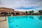 14428 Desert Flower Drive - Photo 47
