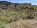 0xxxx Cow Creek Road - Photo 7