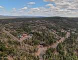 1711 Snow Creek Loop - Photo 2
