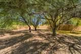 3019 Trail Drive - Photo 54