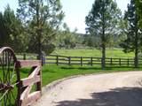 10940 Long Meadow Drive - Photo 2