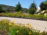 10940 Long Meadow Drive - Photo 76