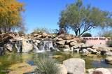 14951 Desert Willow Drive - Photo 44