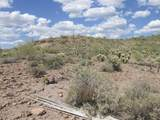 74 Elephant Butte Road - Photo 3