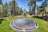 2061 Canyon Ridge Trail - Photo 20