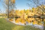 1442 Castle Hills Drive - Photo 48