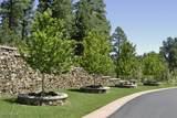 1442 Castle Hills Drive - Photo 63
