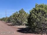 11 County Road 3199 - Photo 9
