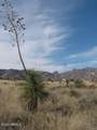 .83 Acre(1Lot) On Justin&Willcox Road - Photo 2