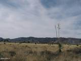 .83 Acre(1Lot) On Justin&Willcox Road - Photo 3
