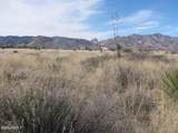 .83 Acre(1Lot) On Justin&Willcox Road - Photo 4