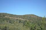 0 Ruger Ranch Road - Photo 10