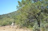 0 Ruger Ranch Road - Photo 3