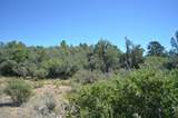 0 Ruger Ranch Road - Photo 5