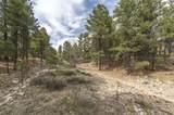 3293 Gila Drive - Photo 10