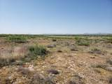 26.80 Acre Mcbride Road - Photo 5