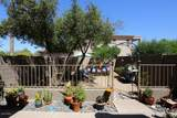 11606 Saguaro Boulevard - Photo 4