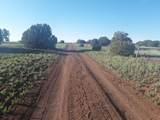 5 Acres Tbd Roadrunner Road - Photo 10