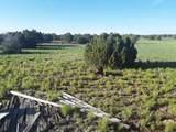 5 Acres Tbd Roadrunner Road - Photo 12