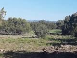 5 Acres Tbd Roadrunner Road - Photo 14